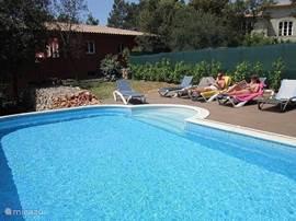 Aan het zoutwater zwembad vindt u  comfortabele ligbedden om heerlijk van de zon te genieten !