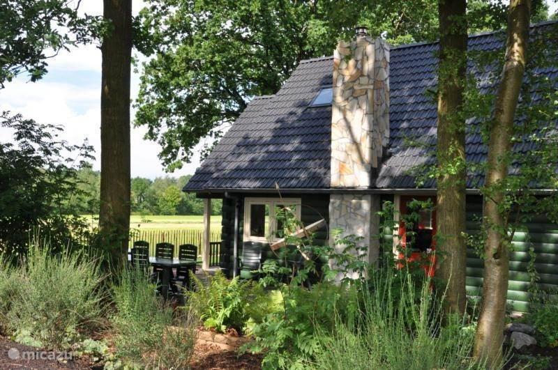 Vakantiehuis Nederland, Drenthe, Hoogersmilde blokhut / lodge Boshuis Drenthe