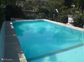 Zwembad ongeveer 14x5,5m.