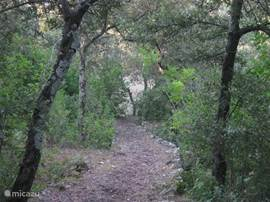A scenic trail on the property across the wooded valley which side is also easily accessible.