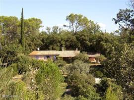 House seen from across the site. The terrain is a shallow valley with numerous terraces, planted with olive trees, fig trees and oaks.