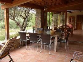 Covered outdoor patio table and 10 chairs. You can touch the olive tree. Adjoining the kitchen with dining table and 10 chairs. Across the table sits the sink.