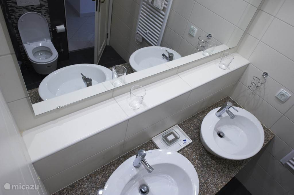 Badkamer en suite met inloopdouche