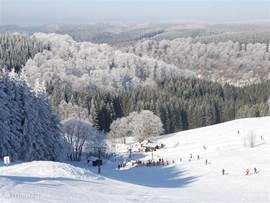 Skigebied Altastenberg, mooi gelegen op ongeveer 20 minuten van Elpe.