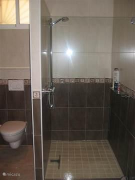 De inloop douche van het gastenverblijf is voorzien van glazen deur.