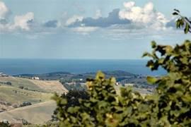 De zee ligt hemelsbreed op 18km. Onder de gazebo, tussen de olijfbomen, genieten van een drankje en uitkijken over de heuvels en de zee.  Met de auto ben je in 35 minuten op het zandstrand van Pineto.