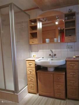 badkamer op het gelijkvloers met douche,lavabo en toilet.