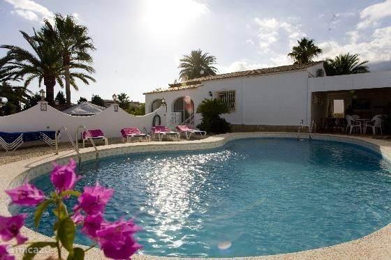 Vakantiehuis Spanje, Costa Blanca, Alfáz del Pi - villa villa violeta