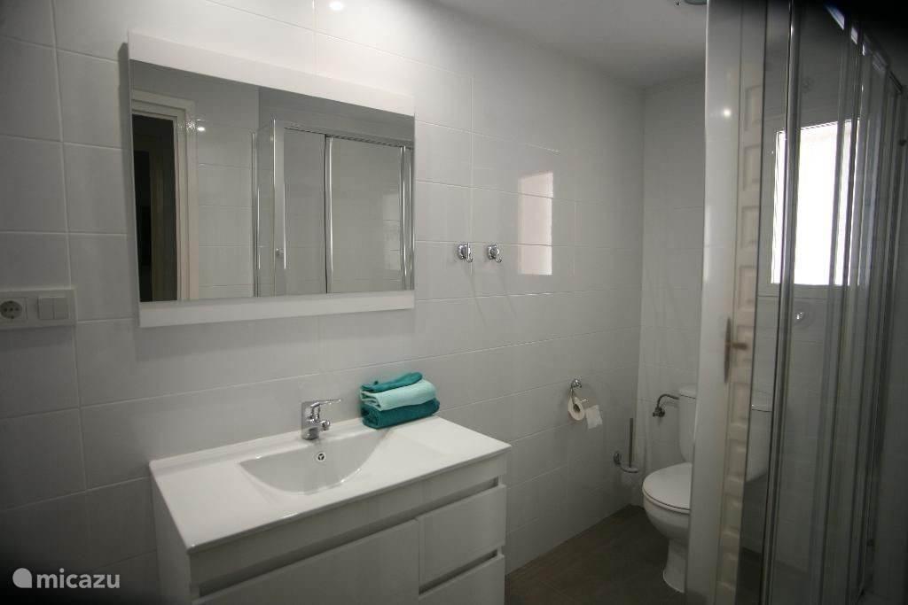 recentelijk vernieuwde badkamer appartement beneden