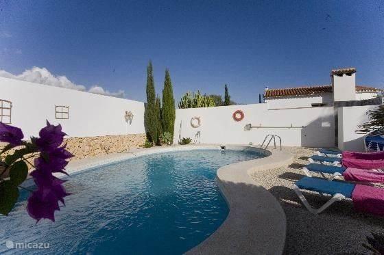 Een groot zwembad waar U heerlijk kunt zwemmen en zonnen van alle gemaken voorzien zoals ligbedden en een buitendouce.