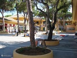 Centro Commercial in Elviria op 10 (auto)minuten afstand.