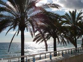 De boulevard van Marbella.