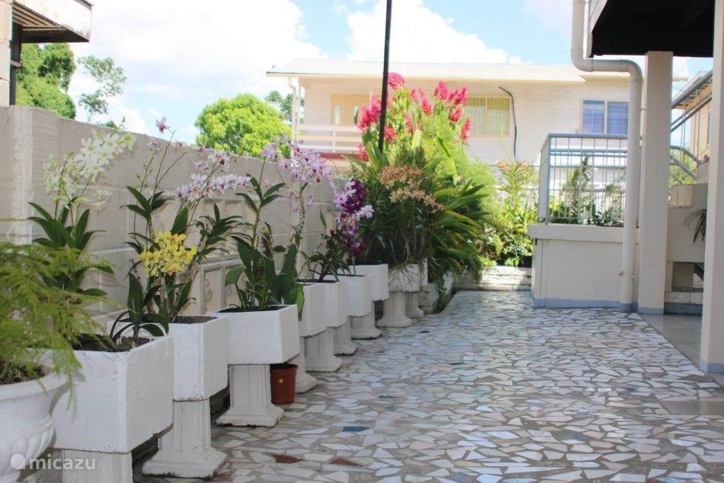 Geniet van de tropische bloemenpracht, tuinieren is meer dan een hobby van Tante Es.