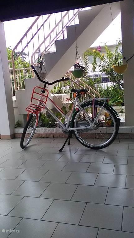U kunt ook een fiets huren voor korte ritjes