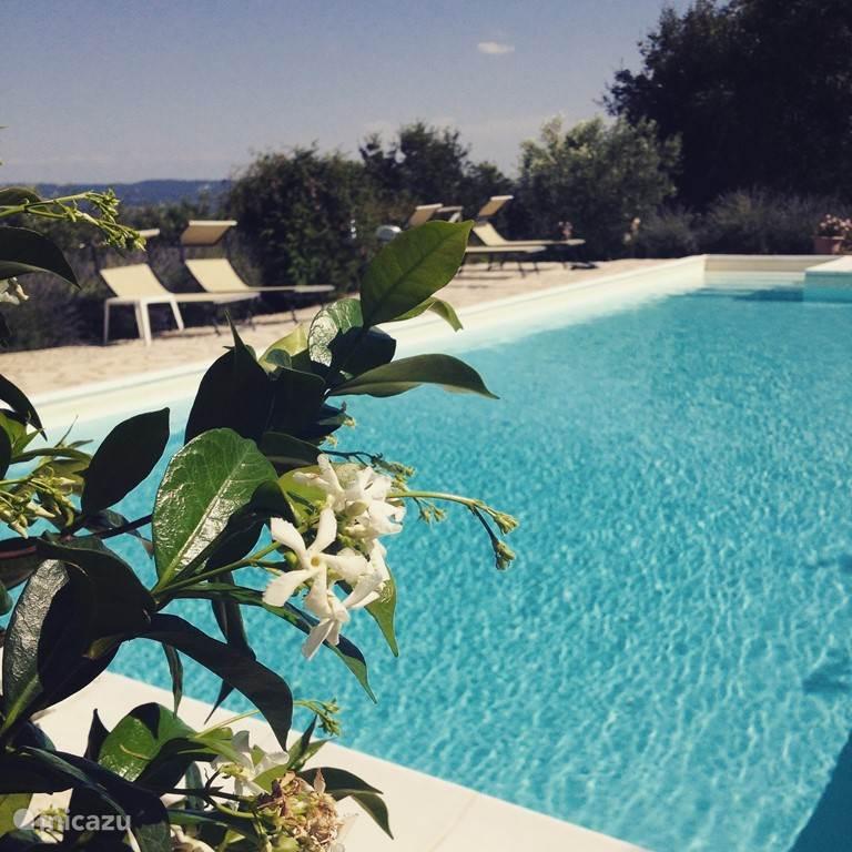 Vakantiehuis Italië, Toscane, Cortona Boerderij Casa Girasole