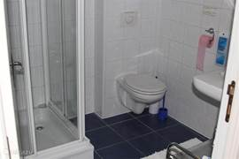 Modern bathroom with toilet, shower and sink.