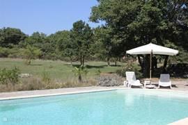 Het ruime prive zwembad (12x6) met prachtig uitzicht over de omringende natuur.