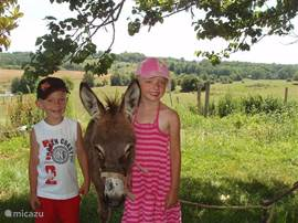 For most children in the city is an experience to get acquainted with the French countryside and the animals on the farm.