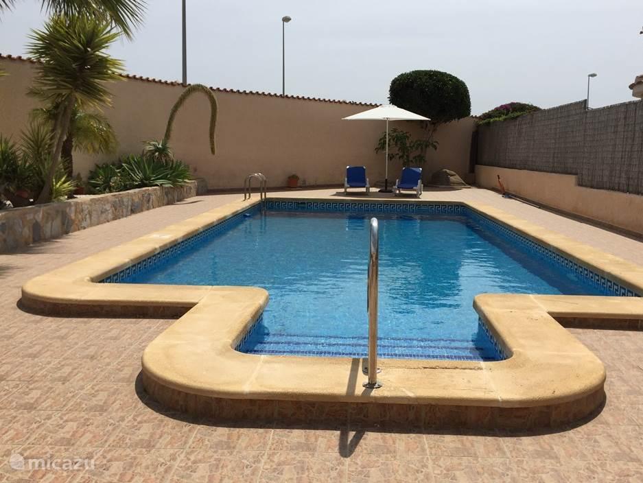 Zwembad met ligbedden.