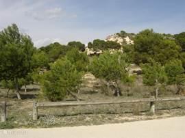 El Recorral park, gelegen in het bosachtige gebied naast de urbanisatie.