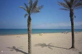 Het prachtige strand van Guardamar del Segura.