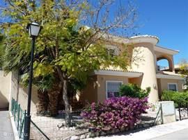Voorzijde Villa met geweldige palmboom aan de zijkant