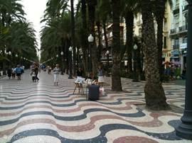 Wandel Promenade Alicante 15 min.