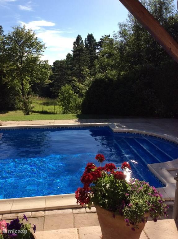 Vacation rental France, Dordogne, Villetoureix Manor / Castle Domaine de Fayolle
