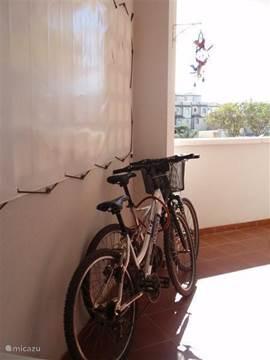 Onze 2 mountainbikes zijn te huur als u in ons appartement verblijft