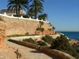 Kilometerslang een wandelpad langs de mooie stranden van La Zenia, El Capitán, Cabo Roig, Campoamor Op een van onze favoriete terrasjes, restaurant Cabo Roig , even uitrusten voor tapas en een heerlijk drankje met van bovenaf een prachtig uitzicht op het haventje van Cabo Roig en de zee.