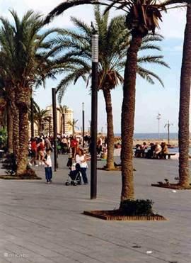 De gezellige boulevard van Torrevieja op 8 kilometer afstand. Torrevieja is een heel leuke stad met veel restaurants en tapasbars een lounge pier. Ook de shopaholics zullen hier aan hun trekken komen. In het winkelcentrum Habaneras bevinden zich diverse winkels, zoals Zara, H&M, C&A en de Carrefour