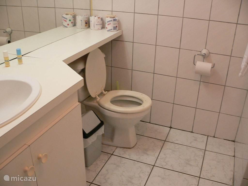 Badkamer met WC, douche en wasbak met warmwater.
