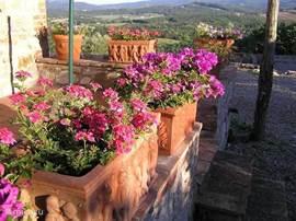 De fattoria is omringd met prachtige bloembakken