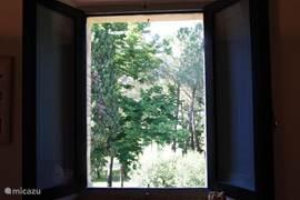 Bosrijk uitzicht tweede slaapkamer over het landgoed