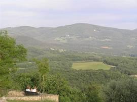 Uitzicht vanaf 1 van de 3 terrassen op het landgoed van de fattoria