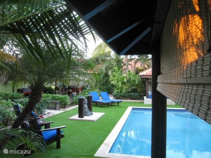 Het zwembad met gezellige cabana's om heerlijk te relaxen!