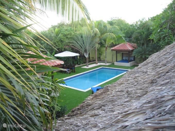 Een kijk op het zwembad van bovenaf.