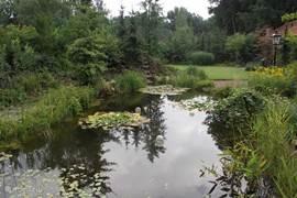 Op uw terras kunt u heerlijk genieten van de zang van de vele soorten vogels en het uitzicht op de vijver.