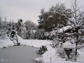 Ook in de winter kunt u heerlijk genieten van onze luxe fins chalet.