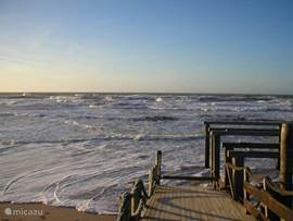 De zee... daar wordt je zo rustig van
