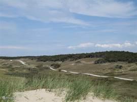 De duinen bij petten. Je kunt hier heerlijk doorheen fietsen, bijvoorbeeld richting Camperduin of verder richting Bergen aan Zee of Egmond