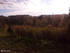De Harz in de herfst, een plaatje!