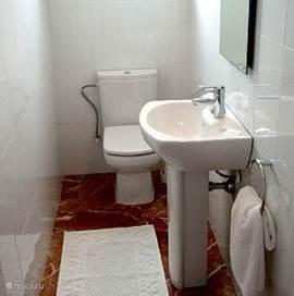 Het gasten toilet met een derde wastafel.