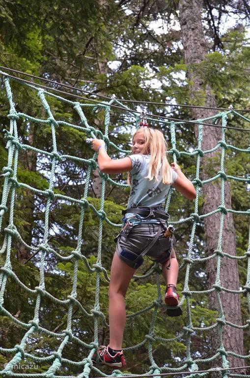 Tree Climbing Course at Laye