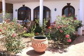 Lekker in de schaduw op de veranda voor met een stukje tuin