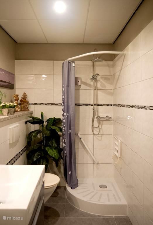 Nette badkamer met toilet, massagedouche en wastafel.
