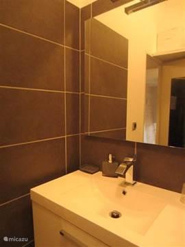 badkamer gerenoveerd in 2013, grote wastafel en douche