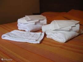 Je hebt de mogelijkheid om bij de boeking een handdoekenpakket te bestellen.