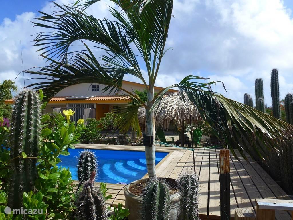 Vakantiehuis Bonaire, Bonaire, Kralendijk vakantiehuis Kas Iguana