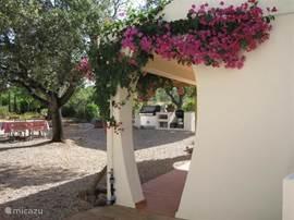 uitkijkend vanaf de villa op de tuin en de buitenkeuken met de weber gas/rotisserie bbq.